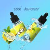 Heißer verkaufene-Saft mit Frucht-Minze-Aroma