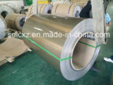 Placa del aluminio del color--Bobina de aluminio del color de PE/PVDF para la construcción