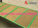 Plante de machine de semailles de pépinière de graine de rizière cultivant la machine