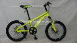 20inch 강철 프레임 MTB 자전거, Sigle 속도 자전거,