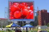 Afficheur LED électronique extérieur du projet HD de l'Australie d'IMMERSION de Skymax