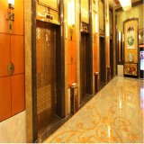 Goldener Farben-TitanEdelstahl-dekoratives Blatt für interne Dekoration