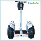 Una gomma da 21 pollice che piega la bici elettrica della sporcizia dell'equilibrio delle due rotelle, pattino elettrico