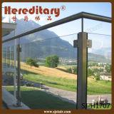 Het Systeem van het Traliewerk van het Glas van het roestvrij staal/de Balustrade van het Glas (sj-S133)