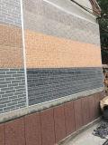 """Panneau """"sandwich"""" de émulsion gravé en relief de polyuréthane en métal pour le mur externe"""
