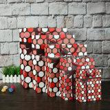 Sacchi di carta variopinti del regalo di disegno popolare