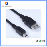 Cabo Mini USB USB2.0 Charger Cable 3m 6FT Tipo C