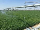 Sistema de irrigação Center do pivô da agricultura