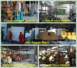목제 가스 발전기 플랜트에서 2016년 생물 자원 발전기 세트