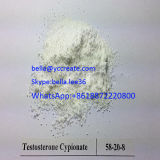 Testosterona esteróide crua Cypionate da hormona para o edifício do músculo