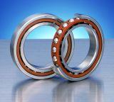 AC шарового подшипника 7211 контакта фабрики подшипника угловой (55*100*21)