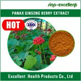 Extrato 80% Ginsenosides da baga do Ginseng de Panax