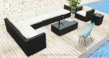 Le sofa extérieur de Sectoinal de patio a placé 2016 en meubles en osier de paquet de jardin d'hôtel de rotin de résine de PE de vente