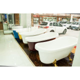 Selling chaud Sanitary Ware Modern Soaking Bathtub (604D)