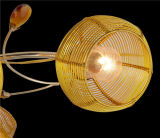 De populaire Lamp van het Plafond in de Rode Schaduw van het Ijzer (x-9420/6)