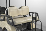 Dongfeng 6 Seats Electric Vehicle voor Golf Cart EQ9042-V6 Cruiser