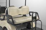Véhicule électrique de sièges de Dongfeng 6 pour le croiseur du chariot de golf EQ9042-V6