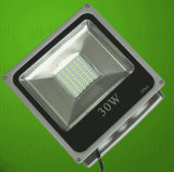indicatore luminoso del fuoco di 30W LED