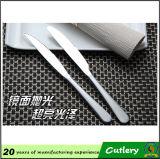 Couteau clair en gros d'acier inoxydable de poignée