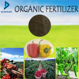 Vegetable、Frtuit、Tree、CropおよびOther Plantsのための有機性Fertilizer