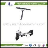 中国製電気スクーターのバランスをとるNewable低価格2の車輪