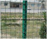 Engranzamento de fio soldado revestimento do PVC para a cerca