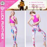 Gymnastik-Kleidung Soem-Qualitäts-Eignung-Polyesterspandex-Frauen-Gamaschen