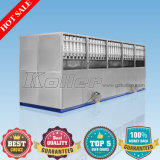 10 Tons/24h Ijsblokje Machine met PLC Control System en Packing System voor Ice Plant en Bars