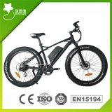 최대 대중적인 350W 뚱뚱한 타이어 산 전기 자전거