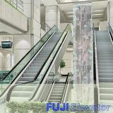 Escada rolante proeminente e automática