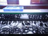 1W 크리 사람 XPE Samll LED 정원 Lamp (JP-83511)