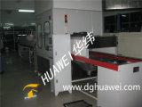 Sistema UV della pittura dell'unità di elaborazione con il forno di essiccazione