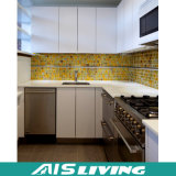 Armário Home dos gabinetes de cozinha da mobília do indicador (AIS-K443)