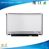 Lp133wh2-SPA1 13.3 인치 1366*768 휴대용 퍼스널 컴퓨터 전시 Witn 넓은 전망 각