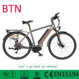 2015 BTN New Sytle 36V 250W Electric Bike