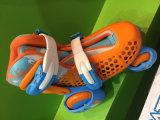 En 71 Approvals (YV-169-02)とのスマートなTurtle Skate