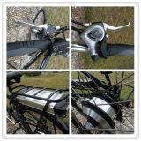 36V 250WはLEDが付いている電気バイクを遊ばす