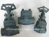 Válvulas de retenção de aço forjadas Sw / NPT Swing