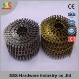 Clavo de la bobina de la asta del anillo del acero suave Q235