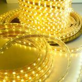 5050SMD 110V/220V LED helle LED Beleuchtung des Streifen-LED