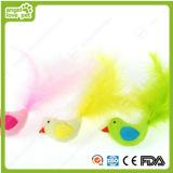 Qualität Vogel-Form Haustier-Spielzeug (HN-PT659)