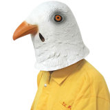 O pombo Halloween traja o partido animal Cosplay da máscara