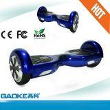 車をねじる2015新型驚くばかりのスクーターの青い電気手段