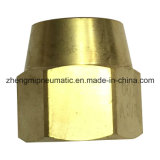 Hose d'ottone Barb Connector per Pipe Fitting