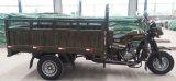 Chongqing 제조 공급자 세발자전거 기관자전차