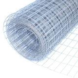 Сетка сетки 1/я '' 1/2 '' изготовления Китая гальванизированная поставщиком сваренная