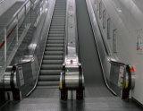 Rolltreppe mit 0.5m/S und 800mm
