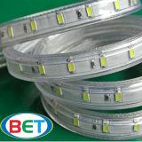 Großhandelsstreifen-Licht 110V 220V im Freien50m/roll des WEISS-5630 LED