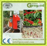 電気のタイプ緑のコーヒー豆の皮機械
