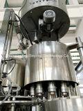 Het mineraalwater plant de Machine van de Verwerking van het Drinkwater